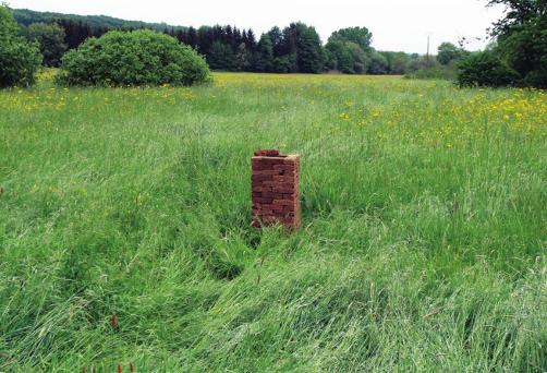 Microbiologie des ruines, abandon de la 1re tour, Diedendorf (bordure de Sarre), 2018. Photo : Camilla Cason